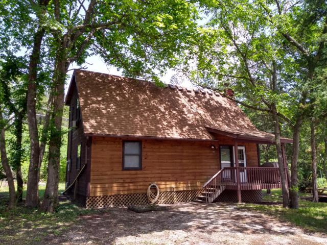 100 Poison Ivy Lane, Hollister, MO 65672 (MLS #60138413) :: Sue Carter Real Estate Group