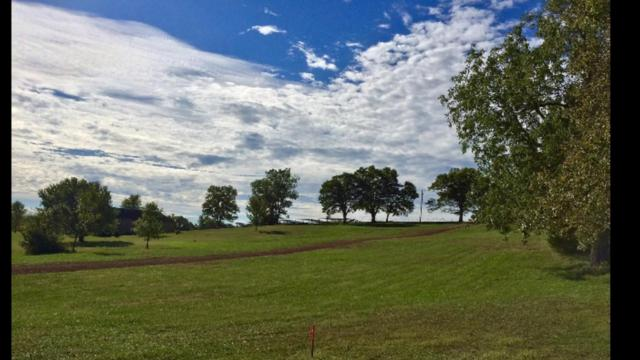 605 E River Bluff Drive Lot 3A, Ozark, MO 65721 (MLS #60138566) :: Sue Carter Real Estate Group