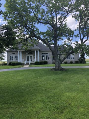18946 Highway Vv, Licking, MO 65542 (MLS #60138576) :: Sue Carter Real Estate Group