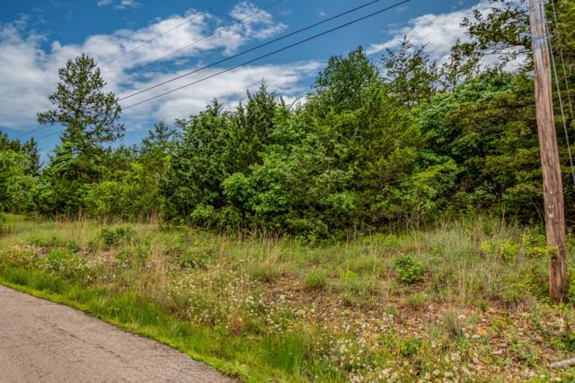 Lot 13 Wilderness Trail, Kimberling City, MO 65686 (MLS #60138817) :: The Real Estate Riders