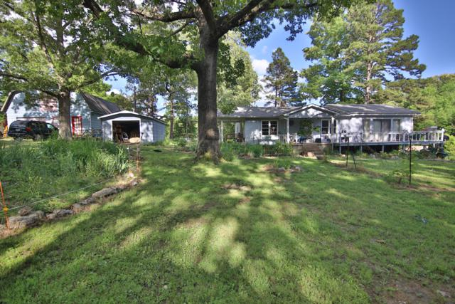 566 Private Road Cc-200, Alton, MO 65606 (MLS #60138938) :: Sue Carter Real Estate Group
