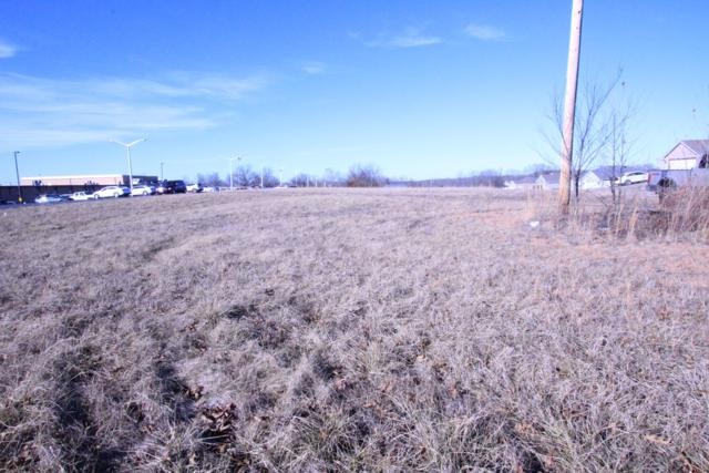 Lot 9 Echo Valley Circle, Reeds Spring, MO 65737 (MLS #60139076) :: Sue Carter Real Estate Group