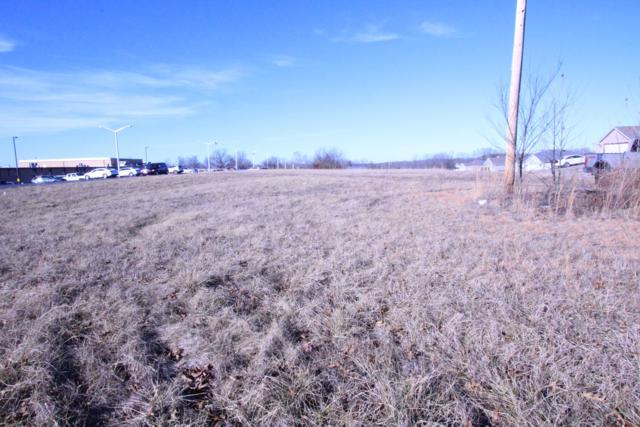 Lot 13 Echo Valley Circle, Reeds Spring, MO 65737 (MLS #60139080) :: Sue Carter Real Estate Group