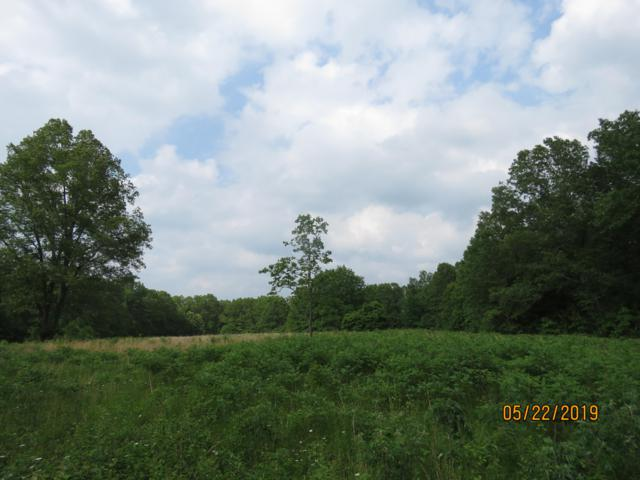 County Road Aj-431, Ava, MO 65608 (MLS #60139149) :: Sue Carter Real Estate Group