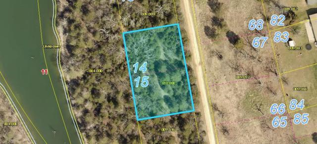 Lots 14-15 Cedar Reef Subdivision, Lampe, MO 65681 (MLS #60139273) :: Sue Carter Real Estate Group