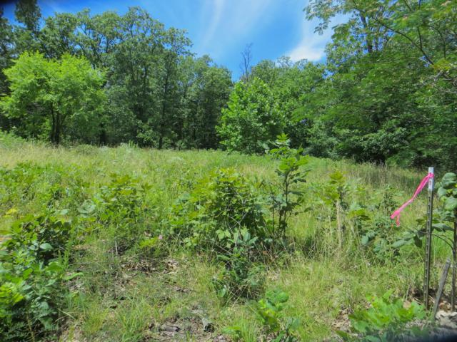 Tbd County Road 311, Alton, MO 65606 (MLS #60139339) :: Sue Carter Real Estate Group