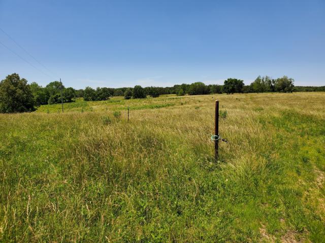 Tbd Little Vine Road, Grovespring, MO 65662 (MLS #60139378) :: Sue Carter Real Estate Group
