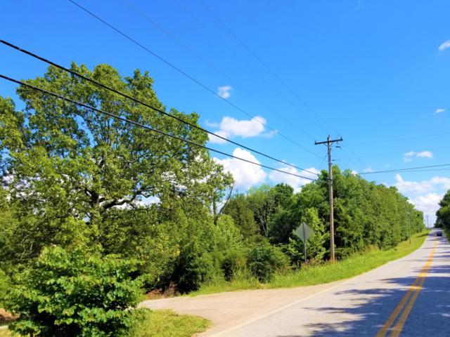 239 Dogwood Lane, Rockaway Beach, MO 65740 (MLS #60139417) :: Team Real Estate - Springfield