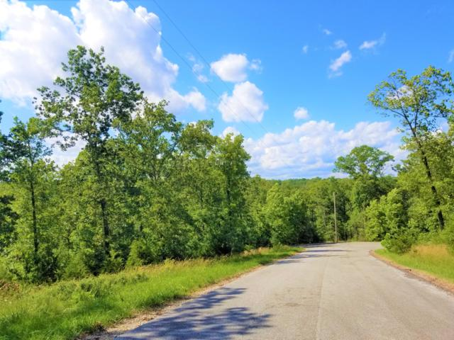 265 Tall Timber Circle, Forsyth, MO 65653 (MLS #60139418) :: Massengale Group