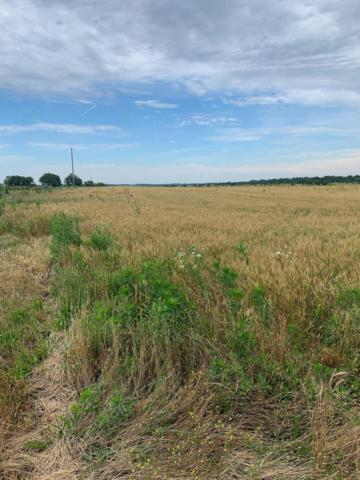 Tbd Farm Road 1057, Purdy, MO 65734 (MLS #60139470) :: Sue Carter Real Estate Group