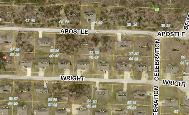 Lot 32 Apostle Drive, Reeds Spring, MO 65737 (MLS #60139496) :: Weichert, REALTORS - Good Life