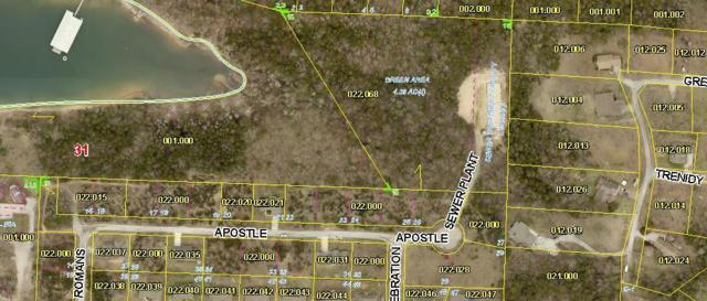 Lot 22 Apostle, Reeds Spring, MO 65737 (MLS #60139593) :: Weichert, REALTORS - Good Life