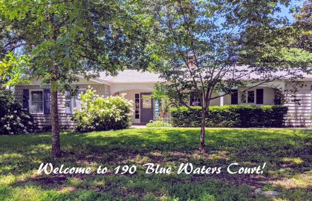 190 Blue Waters Ct., Hollister, MO 65672 (MLS #60139651) :: Massengale Group
