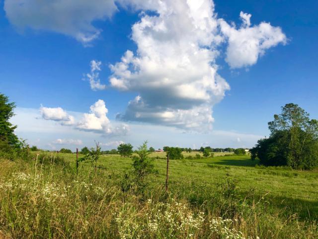 Tbd S Farm Road 115, Brookline, MO 65619 (MLS #60139749) :: Weichert, REALTORS - Good Life