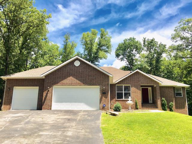145 Spring Lane, Branson, MO 65616 (MLS #60139764) :: Massengale Group