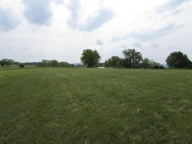 Tbd Gavins Trail, Walnut Shade, MO 65771 (MLS #60139836) :: Sue Carter Real Estate Group
