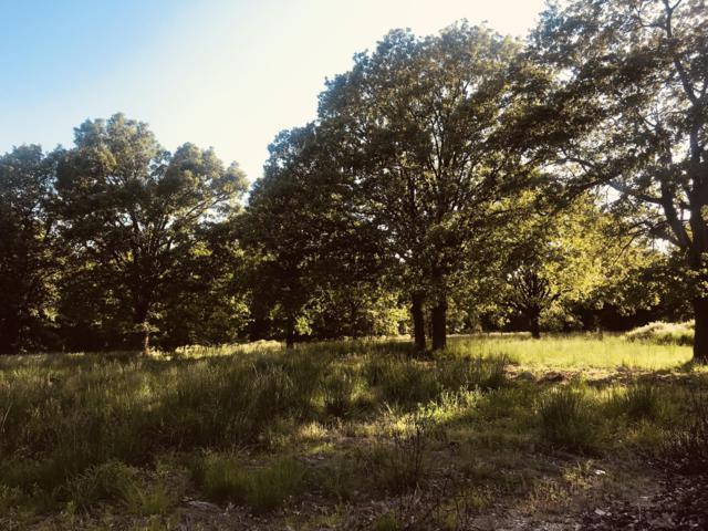 127 Leadmine Road, Tunas, MO 65764 (MLS #60139847) :: Sue Carter Real Estate Group