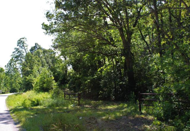 000 State Highway V, Seymour, MO 65746 (MLS #60140079) :: Sue Carter Real Estate Group