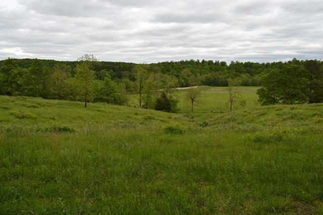 000 County Road P-164, Fremont, MO 63941 (MLS #60140165) :: Weichert, REALTORS - Good Life