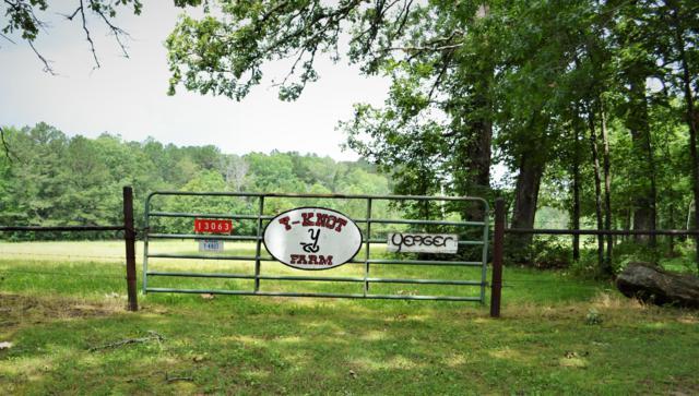 13063 County Road 609, Birch Tree, MO 65438 (MLS #60140203) :: Weichert, REALTORS - Good Life