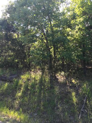 Lot 1 Ozark Hollow Road, Blue Eye, MO 65611 (MLS #60140207) :: Sue Carter Real Estate Group
