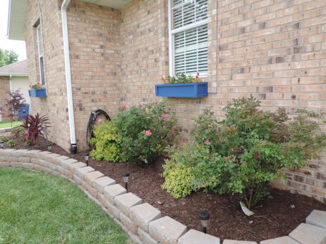 801 Berry Lane, Willard, MO 65781 (MLS #60140213) :: Weichert, REALTORS - Good Life