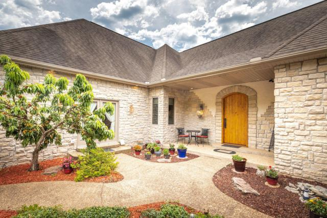 518 Skyview Road, Branson, MO 65616 (MLS #60140230) :: Weichert, REALTORS - Good Life