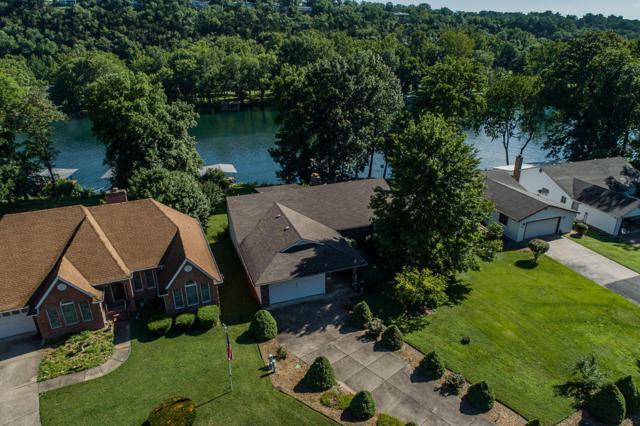 294 Michael Avenue, Hollister, MO 65672 (MLS #60140273) :: Sue Carter Real Estate Group