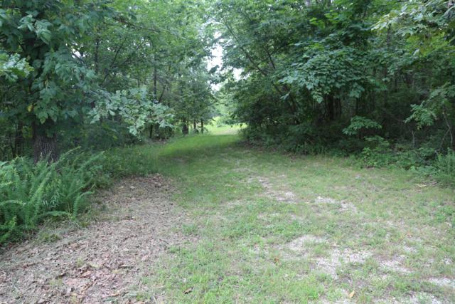 Tbd County Road 219, Thayer, MO 65791 (MLS #60140330) :: Sue Carter Real Estate Group