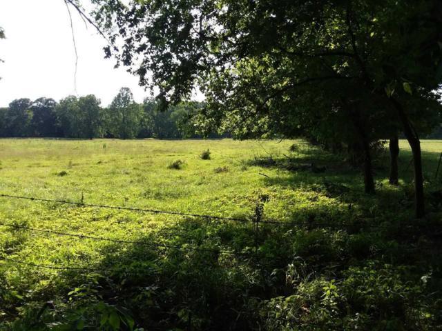 2057-A Klondike, Goodman, MO 64843 (MLS #60140362) :: Sue Carter Real Estate Group