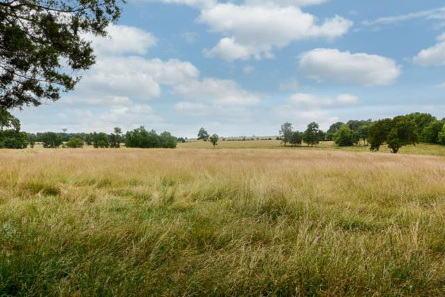 00 Tract 2 Greene Road, Sparta, MO 65753 (MLS #60140363) :: Evan's Group LLC