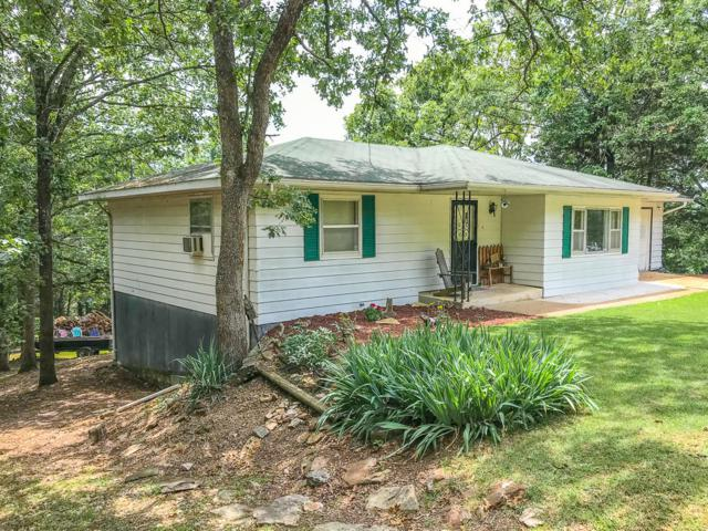 349 Highview Drive, Theodosia, MO 65761 (MLS #60140440) :: Sue Carter Real Estate Group