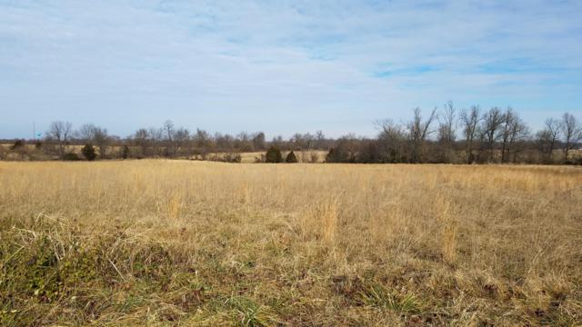 Tract 2-A Drier Road, Billings, MO 65610 (MLS #60140488) :: The Real Estate Riders