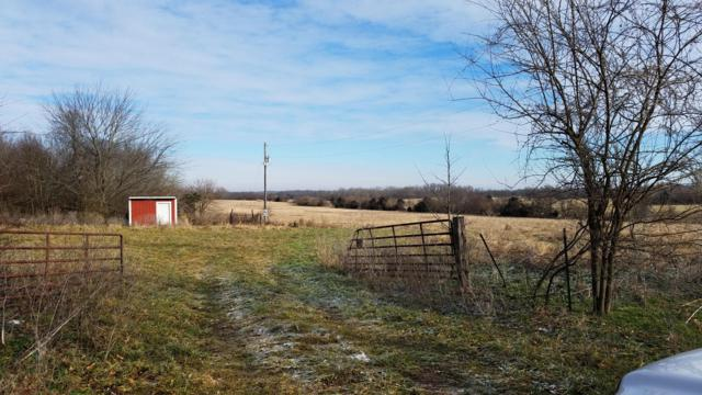 Tract 2-B Drier Road, Billings, MO 65610 (MLS #60140489) :: The Real Estate Riders