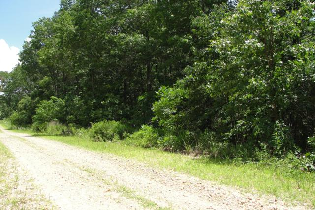Tbd Golden Trail, Raymondville, MO 65555 (MLS #60140504) :: Sue Carter Real Estate Group