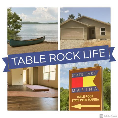 131 Lake Beach Lane, Hollister, MO 65672 (MLS #60140572) :: Sue Carter Real Estate Group