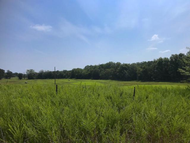 Tbd County Road 446, Winona, MO 65588 (MLS #60140578) :: Sue Carter Real Estate Group