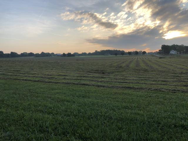 0 N Farm Road 133, Springfield, MO 65803 (MLS #60140609) :: Sue Carter Real Estate Group