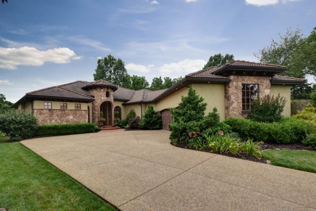 3814 San Poppi Court, Ozark, MO 65721 (MLS #60140636) :: Sue Carter Real Estate Group