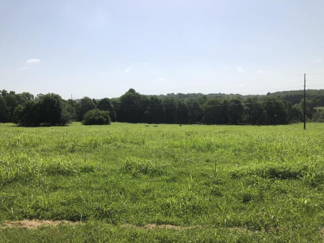 Tbd-Tr10 Farm Rd.178, Brookline, MO 65619 (MLS #60140659) :: Sue Carter Real Estate Group
