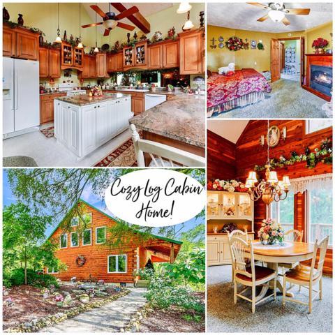 32 Cabin Home Road, Blue Eye, MO 65611 (MLS #60140729) :: Team Real Estate - Springfield
