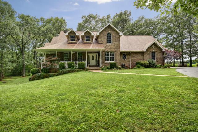 901 Shilee Drive, Rogersville, MO 65742 (MLS #60140870) :: Sue Carter Real Estate Group
