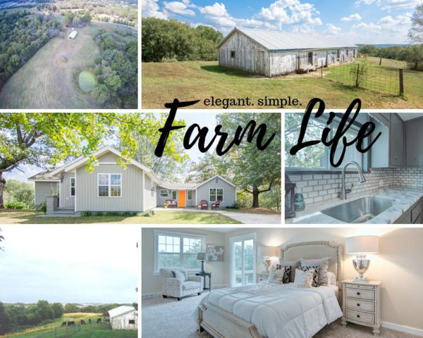 20198 Old Hwy 160, Reeds Spring, MO 65737 (MLS #60140901) :: Team Real Estate - Springfield