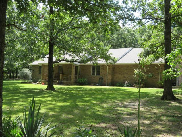 22 Copperhead Lane, Buffalo, MO 65622 (MLS #60140978) :: Team Real Estate - Springfield