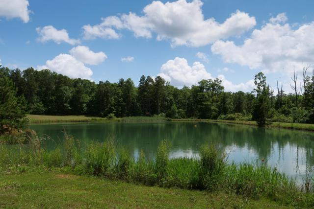 21067 Highway B, Raymondville, MO 65555 (MLS #60141026) :: Sue Carter Real Estate Group