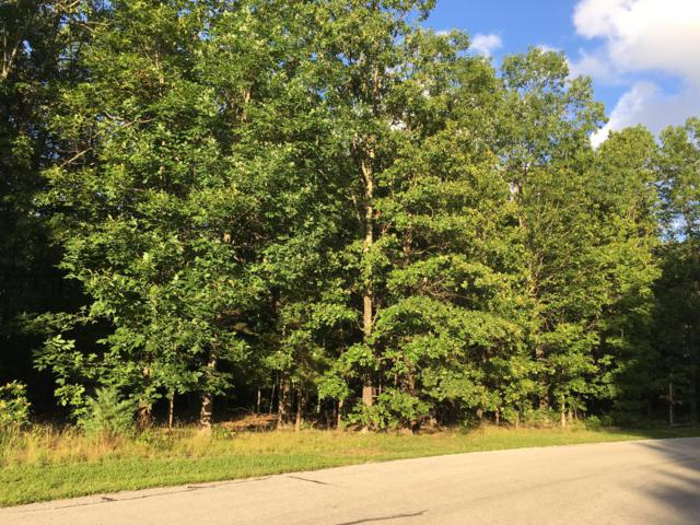 Tbd S Wood Road, Rogersville, MO 65742 (MLS #60141027) :: Team Real Estate - Springfield