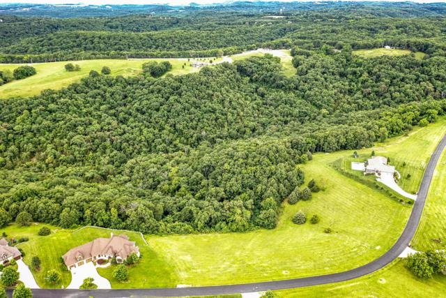 Lot 17 Newbury Road, Reeds Spring, MO 65737 (MLS #60141116) :: Team Real Estate - Springfield