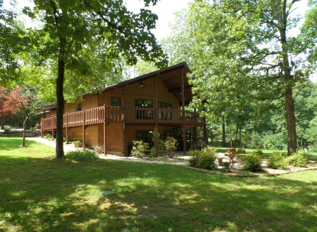 1192 Millwood Drive, Branson West, MO 65737 (MLS #60141155) :: Sue Carter Real Estate Group