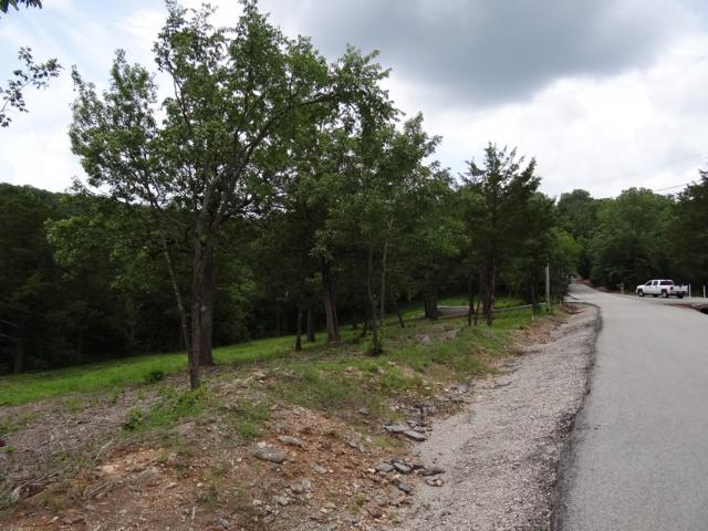 Lot 137 A ---  T B D  Dogwood Village Lane, Lampe, MO 65681 (MLS #60141202) :: Massengale Group