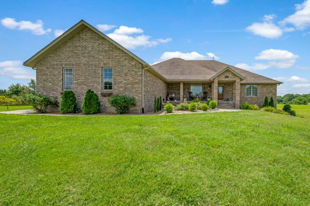 114 Elmview Drive, Ozark, MO 65721 (MLS #60141304) :: Sue Carter Real Estate Group